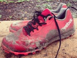 {Product Review: Reebok All Terrain2.0}