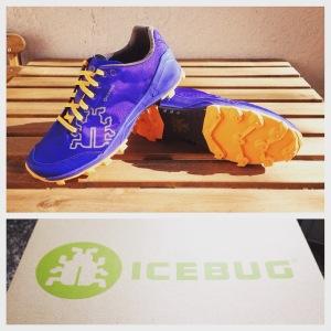 Icebug Shoe Review